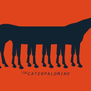 Caterpalomino 03