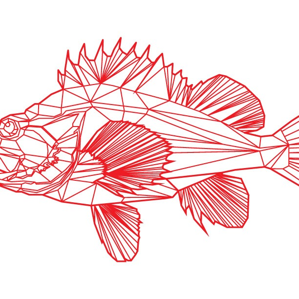 day 102: yelloweye rockfish