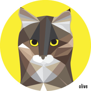 Catsss 02