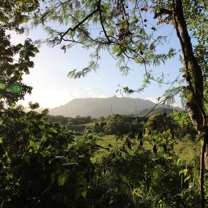 Day 172: Ho'opi'i Falls, Kauai
