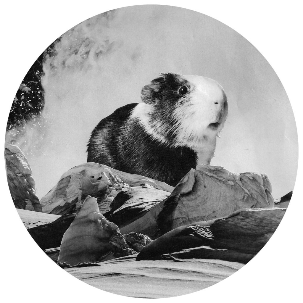 guineau berg
