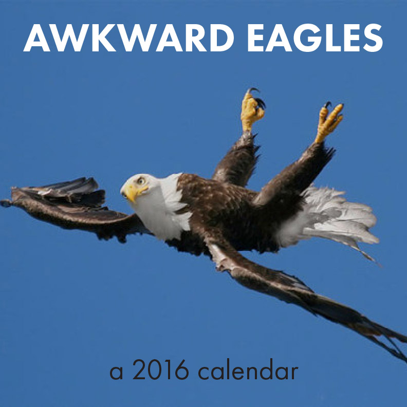 day 332: awkward eagles