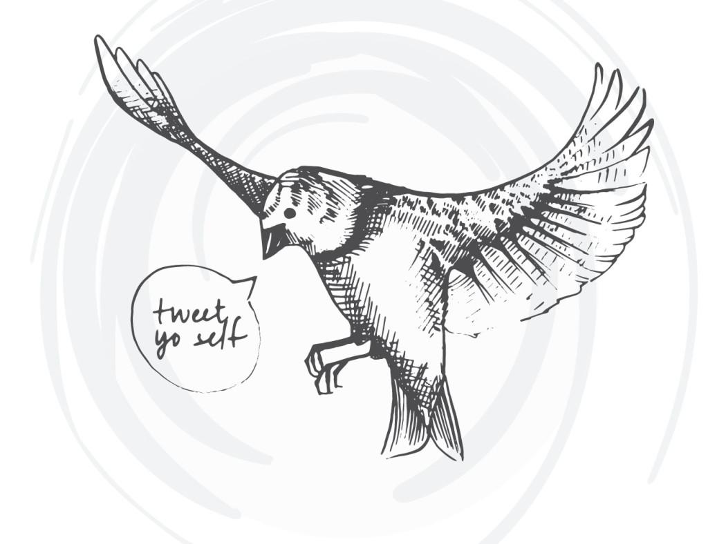 bird-cards-web-02