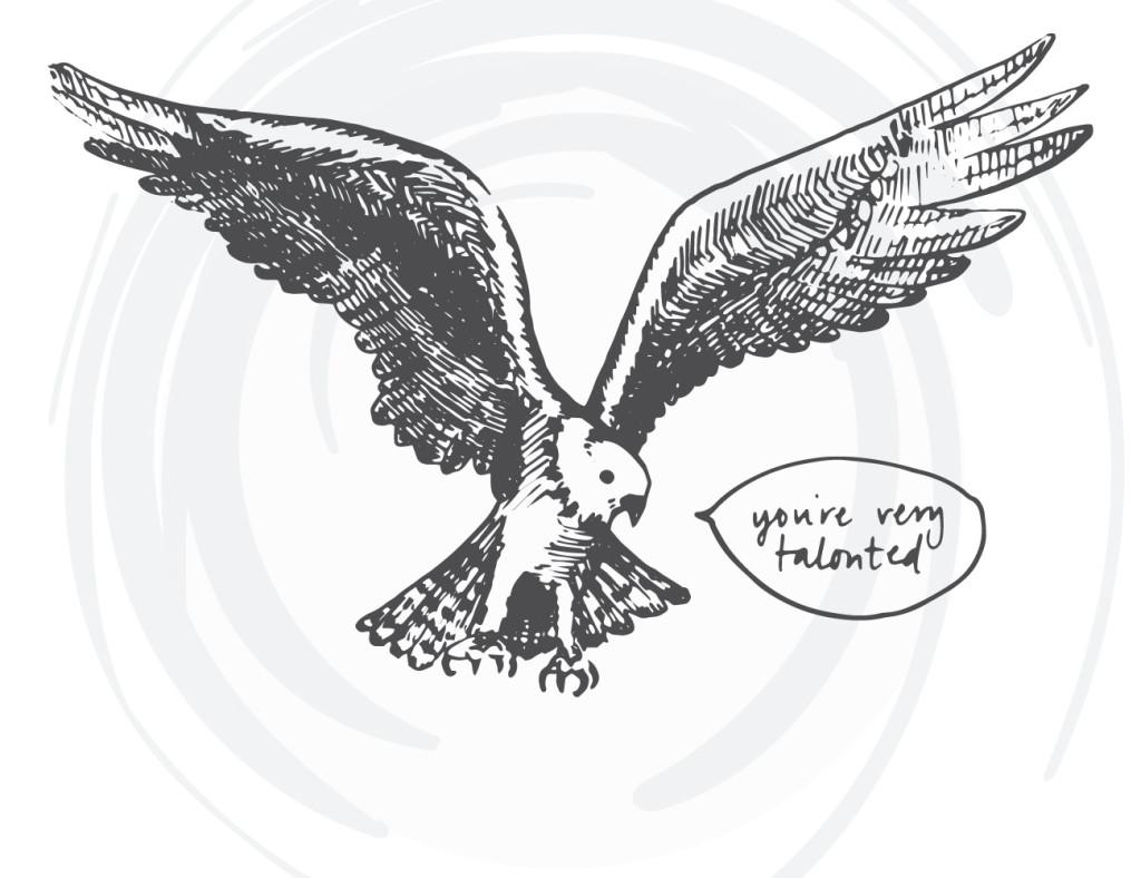 bird-cards-web-03