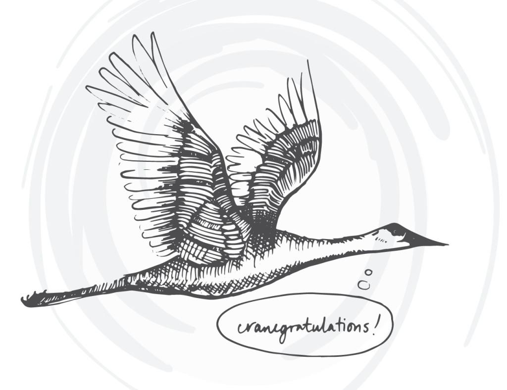 bird-cards-web-04