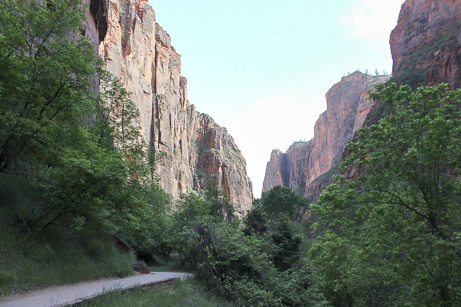 zion national park_10