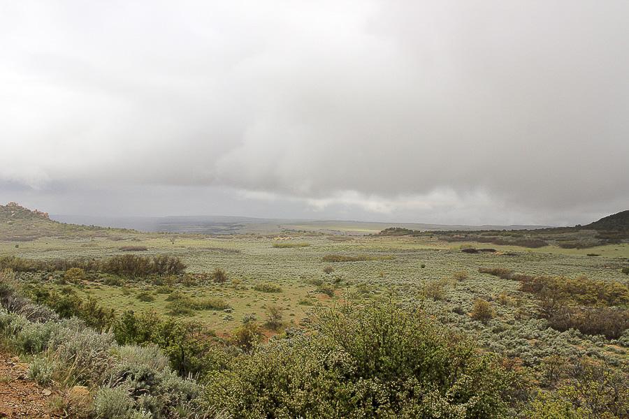 zion national park_16