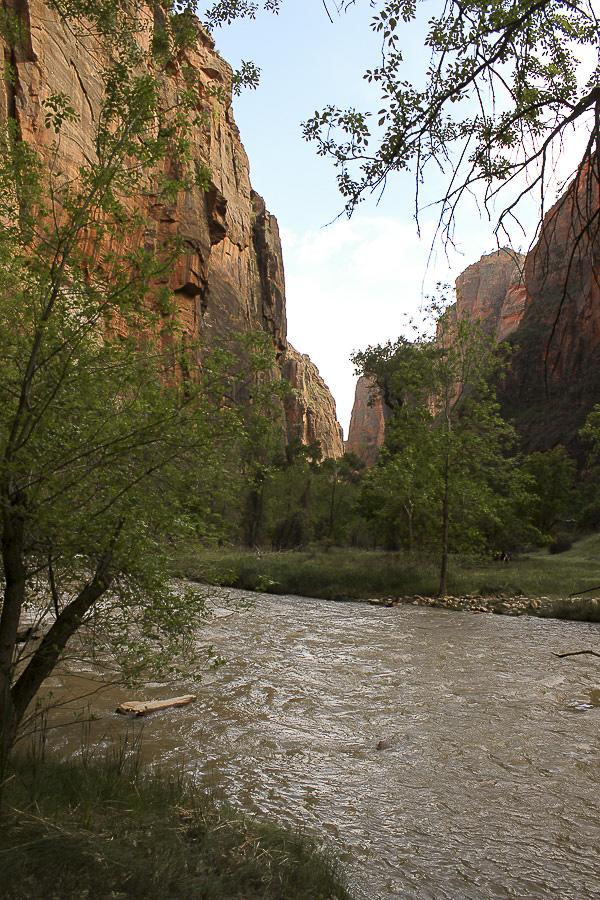 zion national park_8