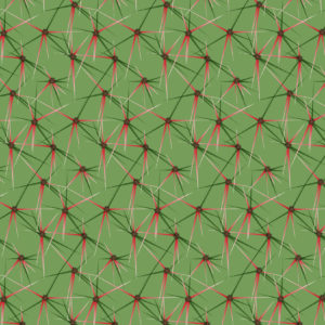 CACTUS PATTERNS 02