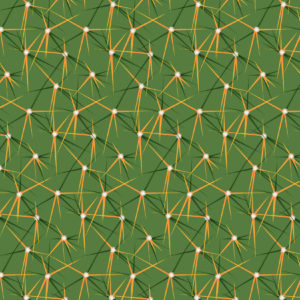 CACTUS PATTERNS 05