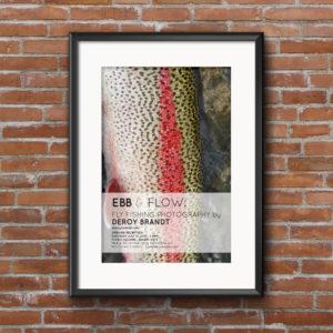 Db Photo Poster Mockup