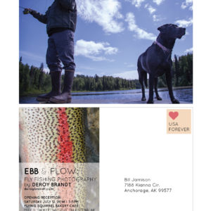 Ebb And Flow Deroy Brandt Postcard Proof