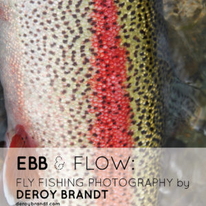 Ebb And Flow Deroy Brandt Tabloid Poster