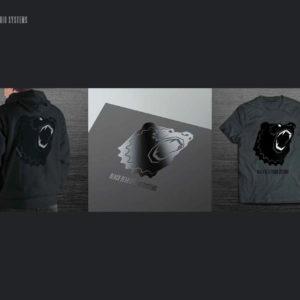 Black Bear Studio Systems